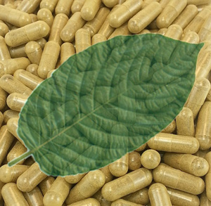 Kratom Drug Interactions